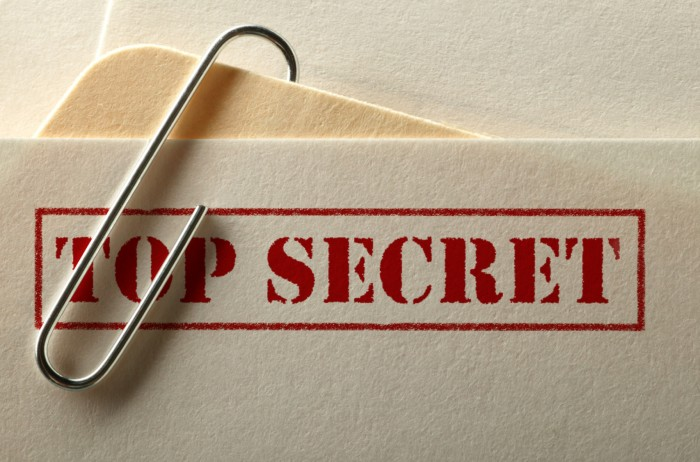Treatment of classified information before the ECJ